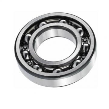 Nj2307m Types of Cylindrical Roller Bearing From China Bearing Factory